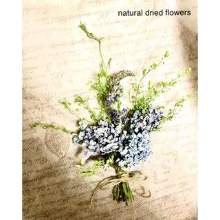 ナチュラルドライフラワー ミニスワッグ 薄紫色ハイドランジアと夏のガーデン(ドライフラワー)