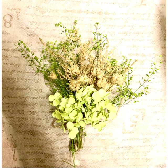 ナチュラルドライフラワー ミニスワッグ アナベルグリーンとゴールドガーデン ハンドメイドのフラワー/ガーデン(ドライフラワー)の商品写真