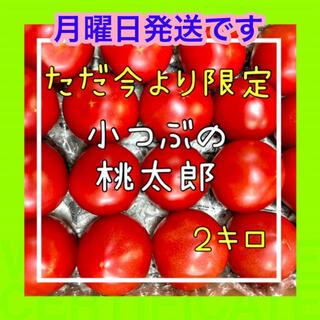 甘い‼️桃太郎ファイトの小粒2k入❗️(野菜)