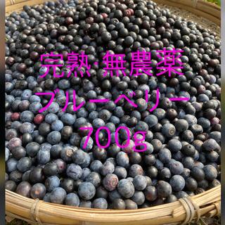 完熟自然農法 無農薬 手摘み 生ブルーベリー 700g (フルーツ)