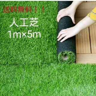 高耐久人工芝 ロール リアル  1m×5m 芝丈35mm 密度2倍 固定ピン付(その他)