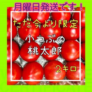濃縮‼️小粒桃太郎ファイト2k入❗️(野菜)