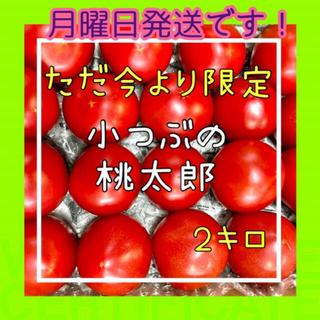 小粒ならではの甘さ‼️桃太郎ファイト2k箱いっぱいにお届け‼️(野菜)