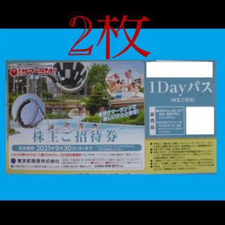 ★当日発送★東京サマーランド1dayパス×2枚(遊園地/テーマパーク)