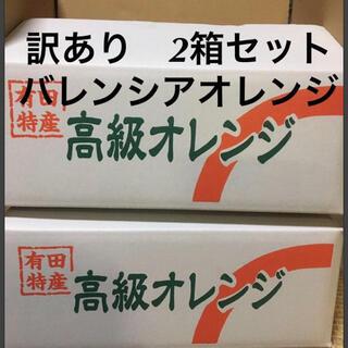 訳あり L 2箱セット 国産バレンシアオレンジ 有田みかん最終セール Lは希少(フルーツ)
