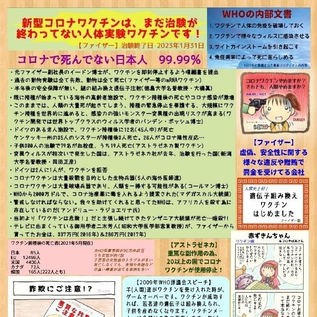 『コ〇ナ茶番に気づいたら読むマンガ』+α エンタメ/ホビーの同人誌(一般)の商品写真