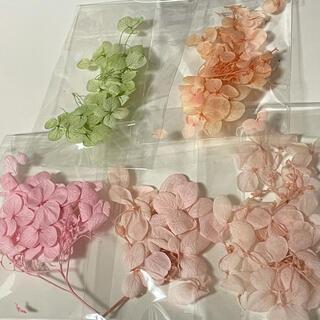 【まとめ買い値引きあり】ドライフラワー 紫陽花 あじさい ⑦(ドライフラワー)