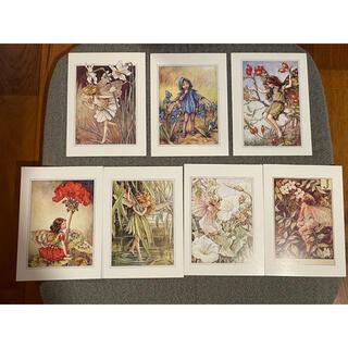 シャドーボックス フラワーフェアリー Tansy Fairy ポストカード 4枚(印刷物)