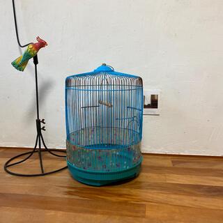 レトロ 青い鳥かご