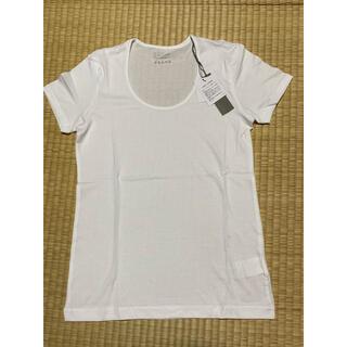 セオリーリュクス(Theory luxe)の新品  セオリーリュクスTシャツ(Tシャツ(半袖/袖なし))