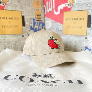 コーチ(COACH)のコーチ スヌーピー  帽子 キャップ  ハット アップル りんご シグネチャー (キャップ)