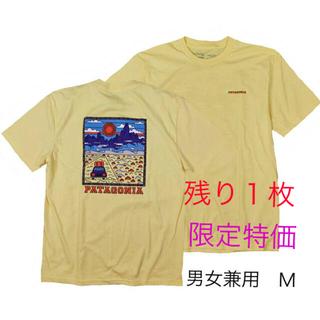 patagonia - パタゴニアTシャツ M 夏T アウトドア カリフォルニアCA サミットロード