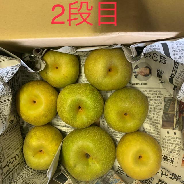 幸水梨 訳あり4.5キロ 食品/飲料/酒の食品(フルーツ)の商品写真