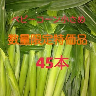 今だけ!ベビーコーン(45本)小さめサイズ(野菜)