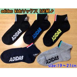 アディダス(adidas)の新品 adidas【5足セット】靴下 SIZE:19〜21cm ソックス(靴下/タイツ)