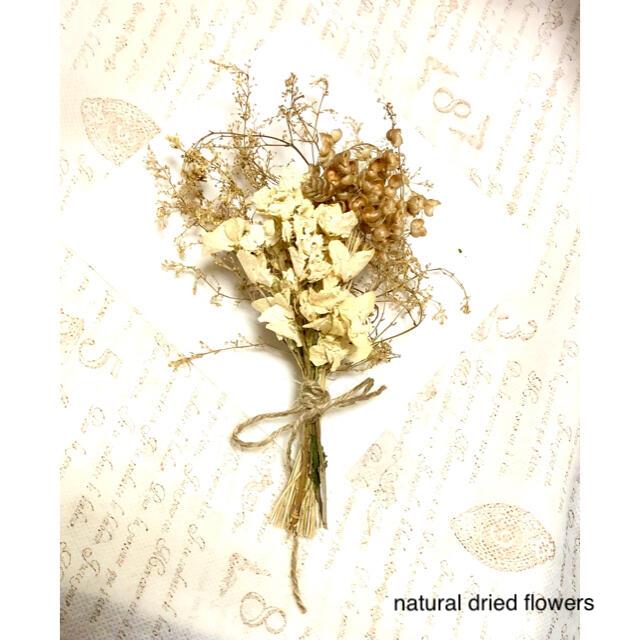 ナチュラルドライフラワー ミニスワッグ 初夏のホワイト&ゴールドカラー ハンドメイドのフラワー/ガーデン(ドライフラワー)の商品写真