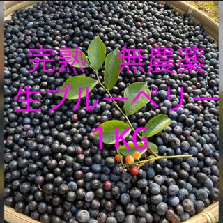 💝完熟フレッシュお試し価格💝自然農法 手摘み 生ブルーベリー1KG(フルーツ)