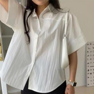 コス(COS)のzemmaworld  半袖シャツ(シャツ/ブラウス(半袖/袖なし))