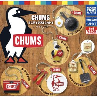 CHUMS - CHUMS チャムス ガチャ 全5種 コンプリート ミニチュアマスコット4