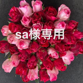 *アニバーサリーローズ* バラ 切り花・生花 40㎝SMサイズ 40本 産地直送(その他)