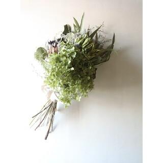 プロテアとアナベルのグリーンスワッグ。紫陽花スワッグ。ドライフラワースワッグ(ドライフラワー)