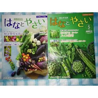 はなとやさい 2021年5月号7月号 タキイ種苗家庭園芸雑誌(専門誌)