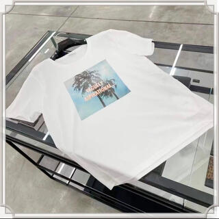 セリーヌ(celine)のCELINE デイヴィッド・クレイマーコラボレーション カットソー(Tシャツ/カットソー(半袖/袖なし))