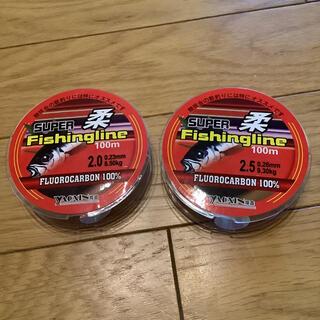 フロロカーボン100% フロロライン 2.5号と2号100m 2個セット ハリス(釣り糸/ライン)