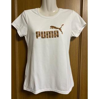 プーマ(PUMA)のプーマ  テニス Tシャツ レディース S 白(ウェア)