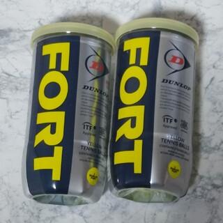 ダンロップ(DUNLOP)のダンロップフォート 2球入 30缶(ボール)