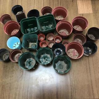 プレステラ29鉢 多肉植物の鉢(プランター)