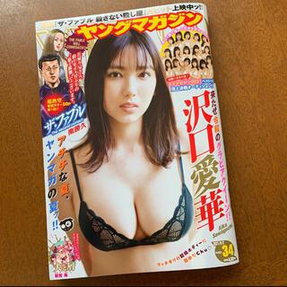 コウダンシャ(講談社)のヤングマガジン 最新号 2021/8/2 No.34(漫画雑誌)