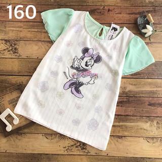 ミニーマウス(ミニーマウス)の【160】ミニー 袖シフォン カットソー Tシャツ(Tシャツ/カットソー)