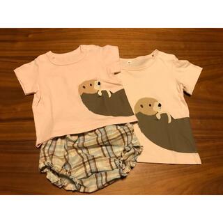 ムジルシリョウヒン(MUJI (無印良品))の3枚セット 無印 動物Tシャツ ラッコ 兄弟お揃い 姉妹お揃い(Tシャツ)