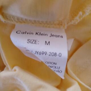 カルバンクライン(Calvin Klein)の単品購入可ブランド2点 カットソー(カットソー(半袖/袖なし))