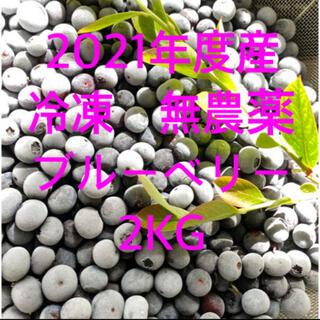 💝お試し価格💝2021年収穫冷凍ブルーベリー2kg クール冷凍送料込(フルーツ)