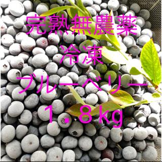 💝オリンピック記念価格冷凍ブルーベリー 1.8KG クール冷凍送料込(フルーツ)