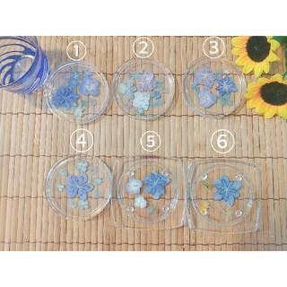 夏色ブルー お花のおもてなしコースター(ドライフラワー)