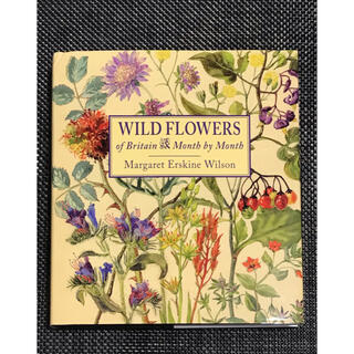 Wild Flowers of Britain  Month  by Month