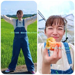 ホリデイ(holiday)の21SS今季 定価3.7万 新品 HOLIDAY/ROKU JANTIQUES(サロペット/オーバーオール)