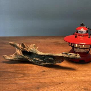 グリーン掛かった流木…天然物、オブジェ、インテリア(彫刻/オブジェ)