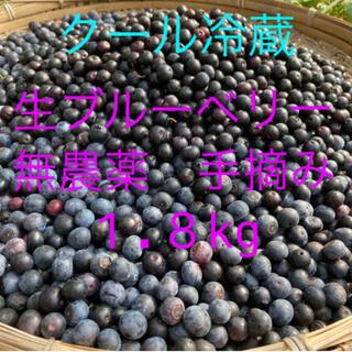 💝2021年生ブルーベリー1.8kg クール冷蔵送料込(フルーツ)