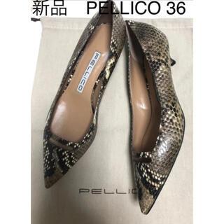 ペリーコ(PELLICO)の新品。PELLICO ペリーコパンプス 36パイソン(ハイヒール/パンプス)
