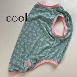 大型犬服(RMサイズ)リーフライトブルー(cool)ピンク(犬)