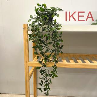 イケア(IKEA)の【新品】IKEA イケア フェイクグリーン (フェイカ)☆(その他)