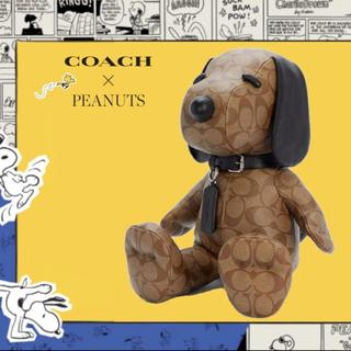 コーチ(COACH)のコーチ スヌーピー(ぬいぐるみ/人形)