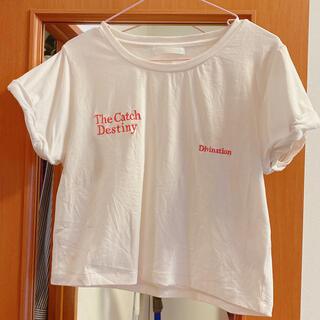 フーズフーチコ(who's who Chico)のchico ショート丈 Tシャツ (Tシャツ(半袖/袖なし))
