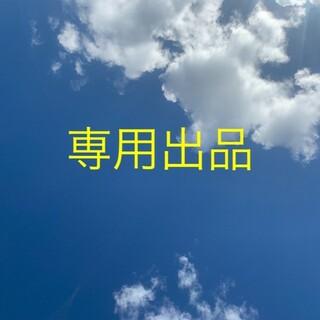 ナプラ(NAPUR)の【専用出品】【2本】スタイリングセラム 94g/ポリッシュオイル150ml(ヘアワックス/ヘアクリーム)