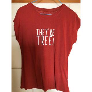 グレイル(GRL)の新品 Tシャツ カットソー 綿100%(Tシャツ(半袖/袖なし))