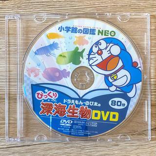 ショウガクカン(小学館)の小学館の図鑑NEO びっくり深海生物 DVD(キッズ/ファミリー)
